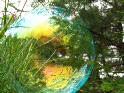 Permaculture in Landscape Design: A Brief Introduction