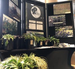 Van Berkum Nursery booth
