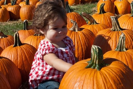 Milly at the Pumpkin Patch