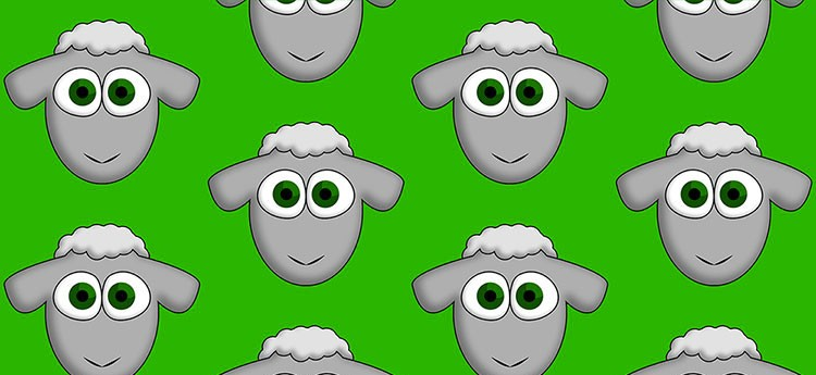 What's the Deal with The Sheep Game?
