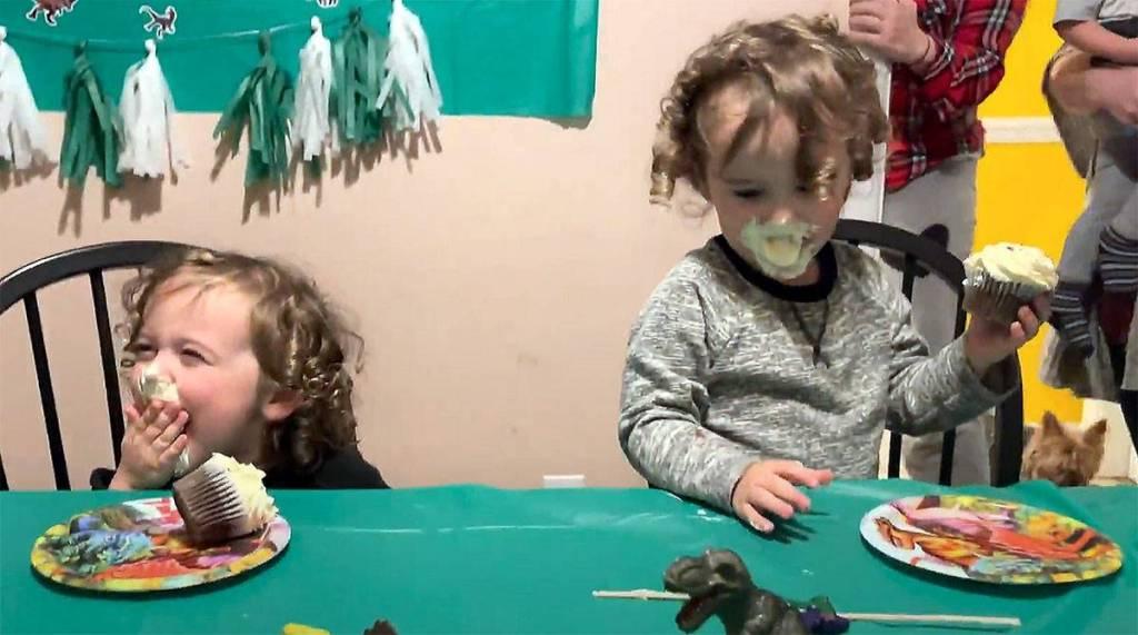 Fawkes and Phoenix's Third Birthday