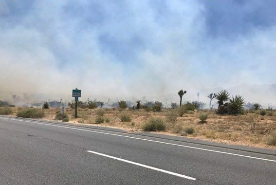 Joshua Tree, CA: Man arrested for unlawfully causing a vegetation fire that burned 150 acres and has been fully contained.