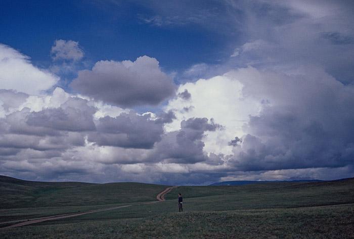 Wandering amidst the Mongolian steppes outside Ulanbaatar.