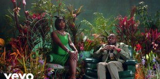Davido – D & G ft. Summer Walker (Official Video)