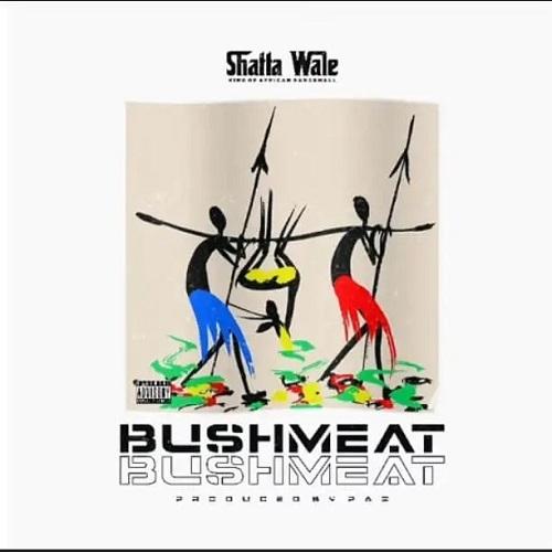 Shatta Wale – Bushmeat (Ajei)