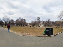 The Commons - aka Boston's Central Park