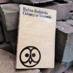 """W ruinach Warszawy (Halina Rudnicka """"Chłopcy ze Starówki"""")"""