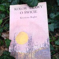 """Starość i młodość (Krystyna Boglar, """"Kolor trawy o świcie"""")"""