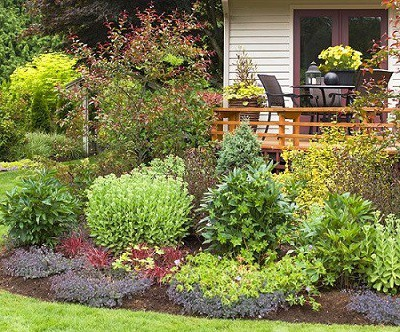 landscaping ideas transform