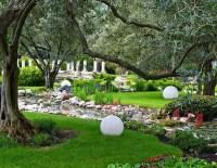 16 Landscaping Ideas Around Trees - Zacs Garden