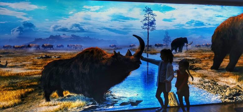 Movie about Erika, the prehistorical rhino