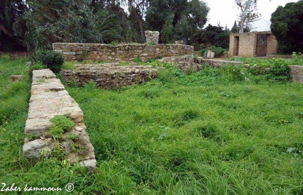 La Basilique de Saint Cyprien