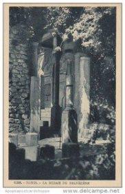 Midha Belvédère (3)