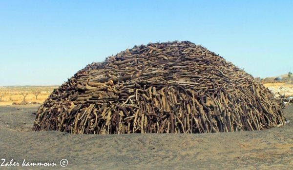 المردومة charbon Sfax
