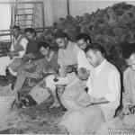 نشاف صفاقس Eponges Sfax