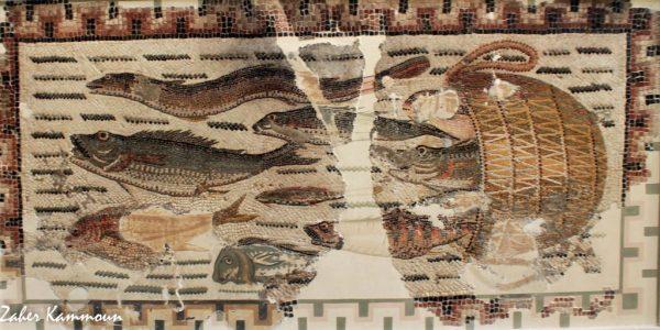Musée sousse متحف سوسة