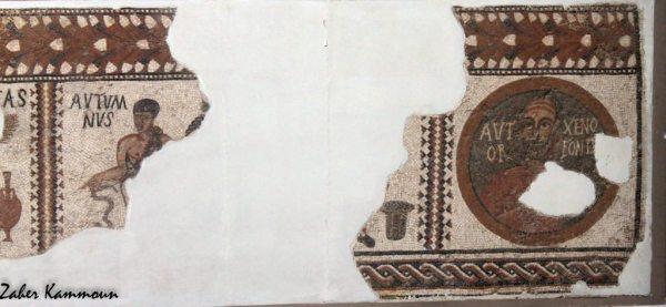 Musée du Bardo متحف باردو
