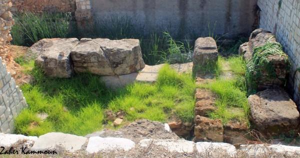 Muraille punique Carthage السور البوني قرطاج