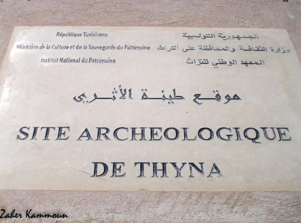 Thyna طينة