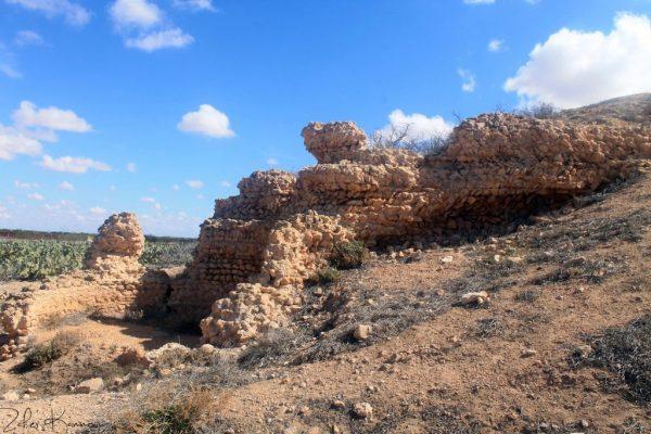 Qsar taniour قصر تنيور Teniour