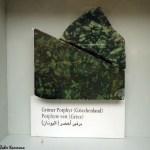 Musée Chemtou متحف شمتو