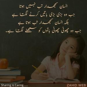 Insaan Samjhdar Tab Nahi Hota