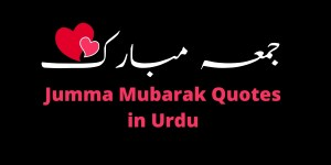 Friday Quotes in Urdu and Hindi (Best Saying)
