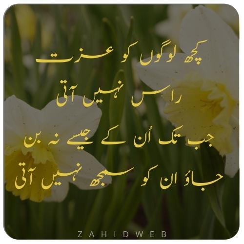 Selfish People Insult in Urdu