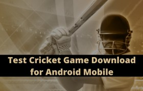 Test Cricket Game Download for Android Mobile