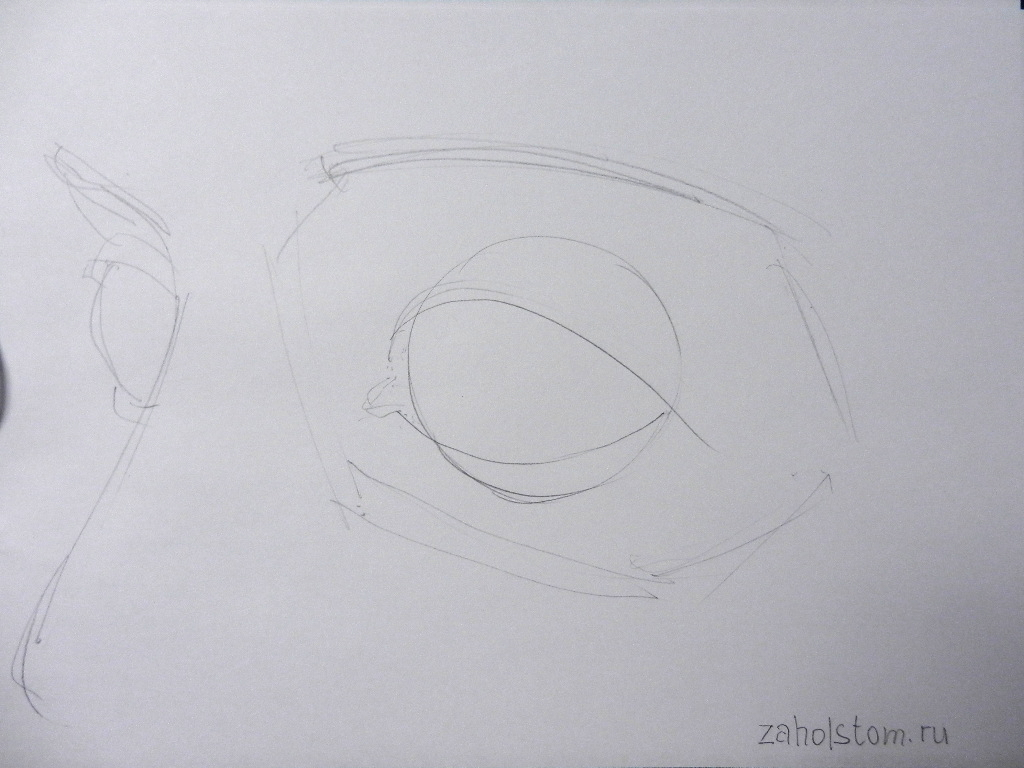 003 how to draw eyes