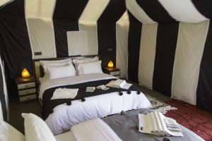 Triple Luxury Tent