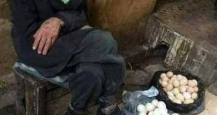 قضايا اجتماعية - السنيورة والعجوز بائع البيض