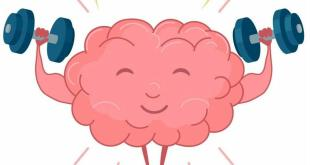 صحة - الدماغ والغذاء