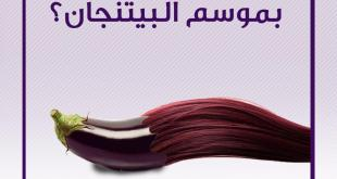 صحة - تساقط الشعر والبيتنجان