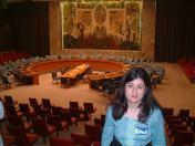 Security Council, UN HQ, New York