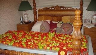 доузряване домати