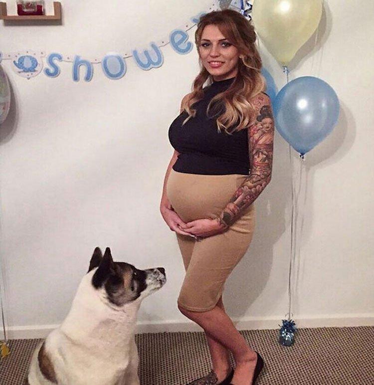 кучето установило бременността ѝ
