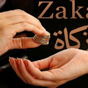 Pay Your Zakat