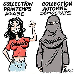 阿拉伯之春 printemps arabe