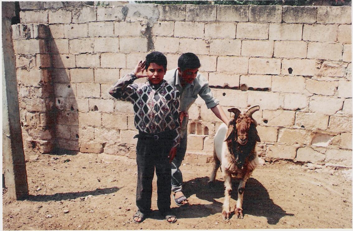 Άραβες μπόμπιρες
