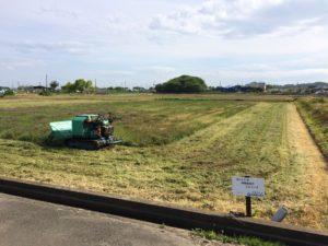 田んぼ草刈り