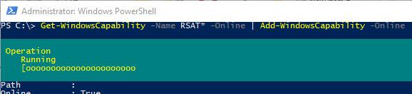 Add-WindowsCapability install rsat using powershell