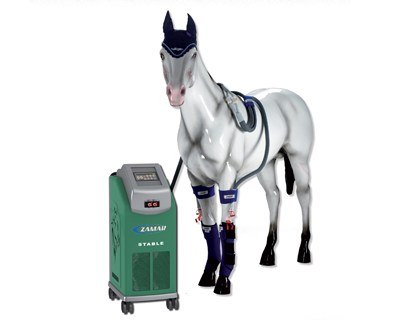 Horse health Zamar machine