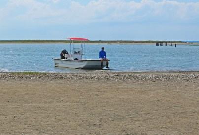Virginia Coastal Reserve