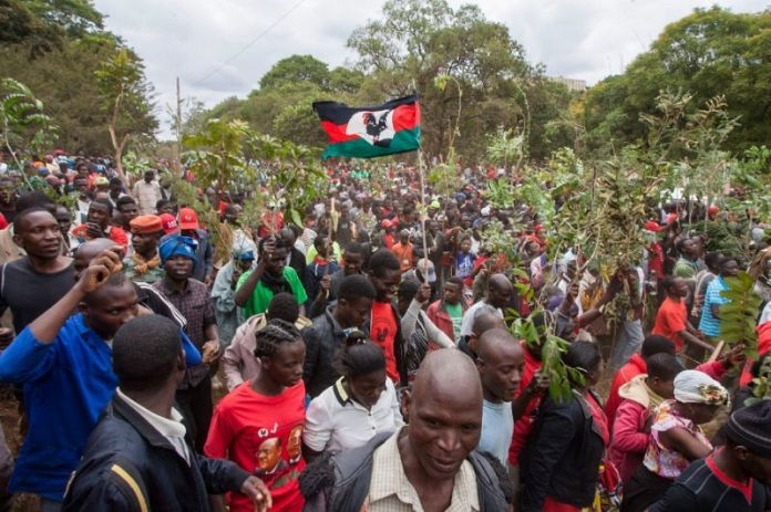 Malawi ConCourt refuses to suspend enforcement of fresh elections rule