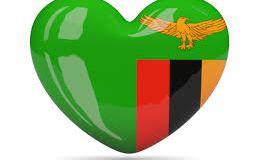 SYSTEMS SPECIALIST CHEMONICS INTERNATIONAL ZAMBIA