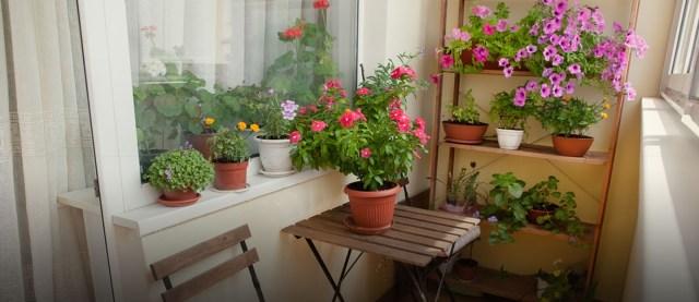 Creative Decor Ideas For A Small Balcony Zameen Blog
