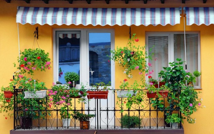 Balcony Privacy Ideas For Your Apartment Zameen Blog