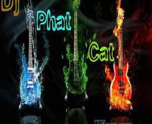 EP: DJ Phat Cat – Way Up, EP, DJ Phat Cat, Way Up, download, cdq, 320kbps, audiomack, dopefile, datafilehost, toxicwap, fakaza, mp3goo zip, alac, zippy, album