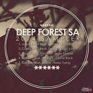 Various Artists, Deepforestsa 2014 Sampler, Deepforest, download ,zip, zippyshare, fakaza, EP, datafilehost, album, Afro House 2018, Afro House Mix, Afro House Music, Deep House Mix, Deep House, Deep House Music, House Music